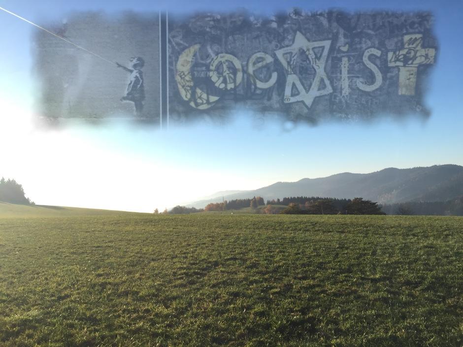Coexistence 3